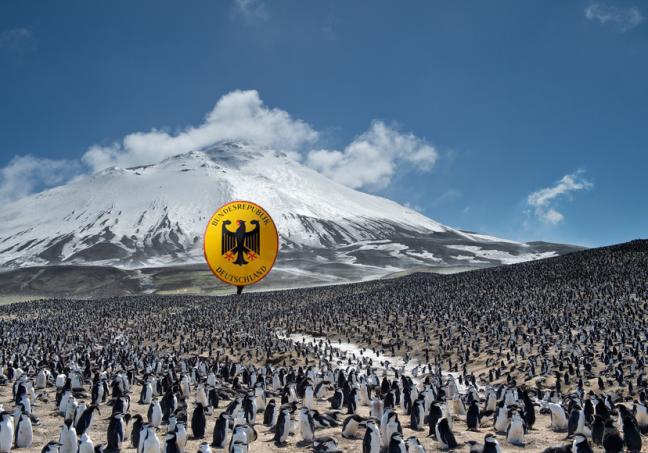 deutsche-pinguine